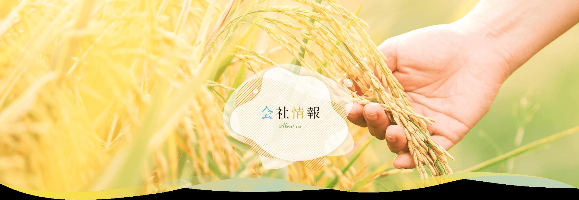 会社概要|米油から健康的に【三和油脂株式会社】