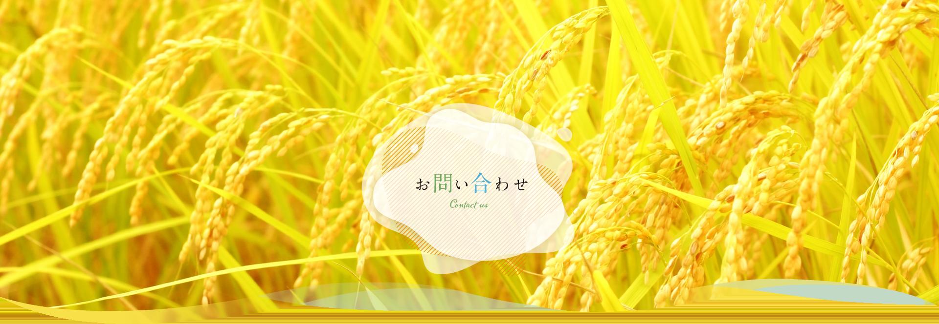 お問い合わせ|米油から健康的に【三和油脂株式会社】