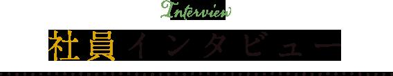 先輩社員のインタビュー
